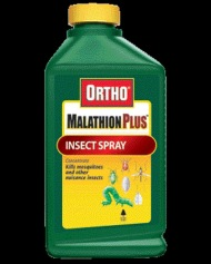 Malathion is mixed with other chemicals by ministry of health officials in the 'war' against mosquitoes.
